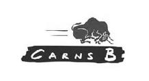 carns bs