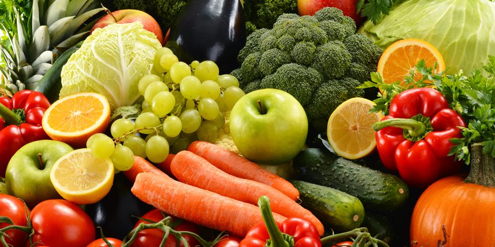 alimentacion blog